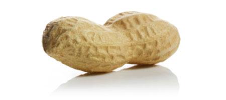 peanut1.jpg